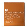 Mizon, All In One Snail Repair Cream, 2.53 fl oz (75 ml)
