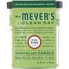 Mrs. Meyers Clean Day, طبعة محدودة، مشتم شمعة الصويا، برائحة صنوبر الأيوا، 4.9 أوقية (140 جم)