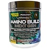 Muscletech, Amino Build Next Gen، عصير ثلجي مجمد، 9.73 أونصة (276 جم)