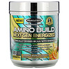 Muscletech, Amino Build® Next Gen Energized,柑橘芒果冰,10.09 盎司(286 克)