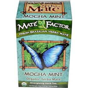 Мэйт Фактор, Organic Yerba Mate, Mocha Mint, 20 Tea Bags, 2.47 oz (70 g) отзывы