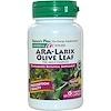 Nature's Plus, Herbal Actives, ARA-Larix Olive Leaf Complex, 750 mg, 60 Veggie Caps (Discontinued Item)