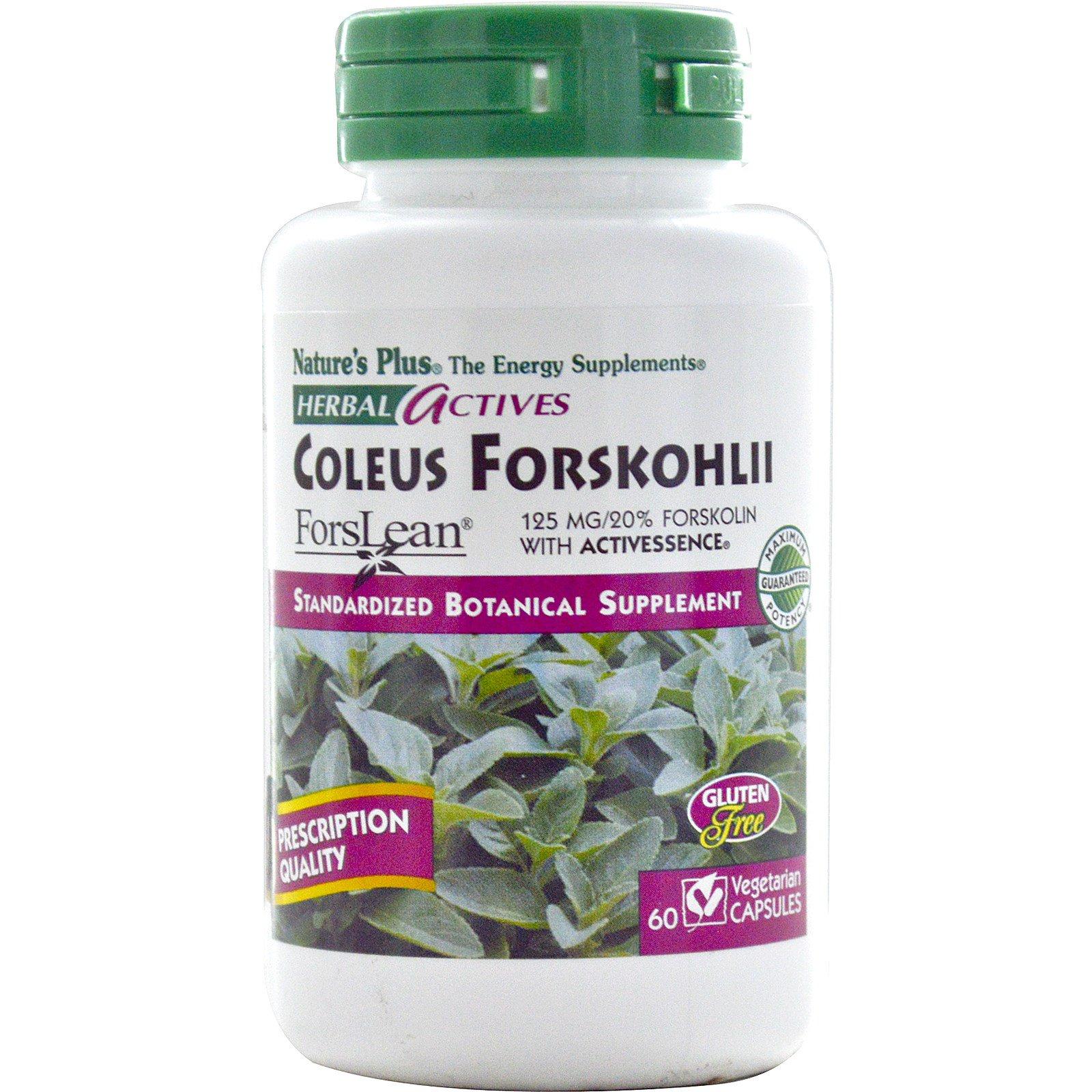 Nature's Plus, Herbal Actives, Тропическая мята, 125 мг, 60 растительных капсул