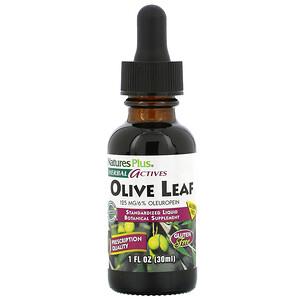Натурес Плюс, Herbal Actives, Olive Leaf, Alcohol Free, 1 fl oz (30 ml) отзывы покупателей