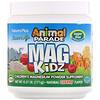 Nature's Plus, アニマルパレード、マグキッズ、子供用マグネシウム、天然チェリー風味、0.37 lb (171 g)