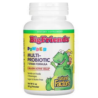 Natural Factors, BigFriends, Multi-Probiotic Powder, 3 Billion, 2 oz (60 g)