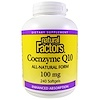 Natural Factors, Coenzyme Q10, 100 mg, 240 Softgels
