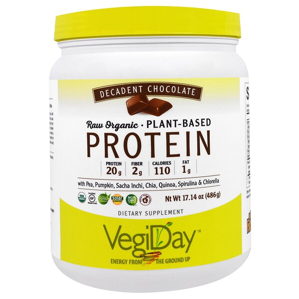 Natural Factors, VegiDay, Raw Organic, Plant-Based Protein, Decadent Chocolate, 17.14 oz (486 g) (Discontinued Item)