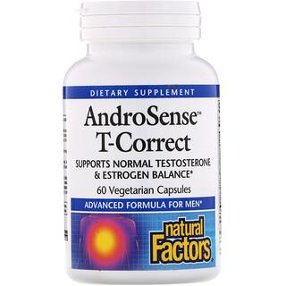 Natural Factors, Тестостерон Андросенс Т-коррект, 60 вегетарианских капсул