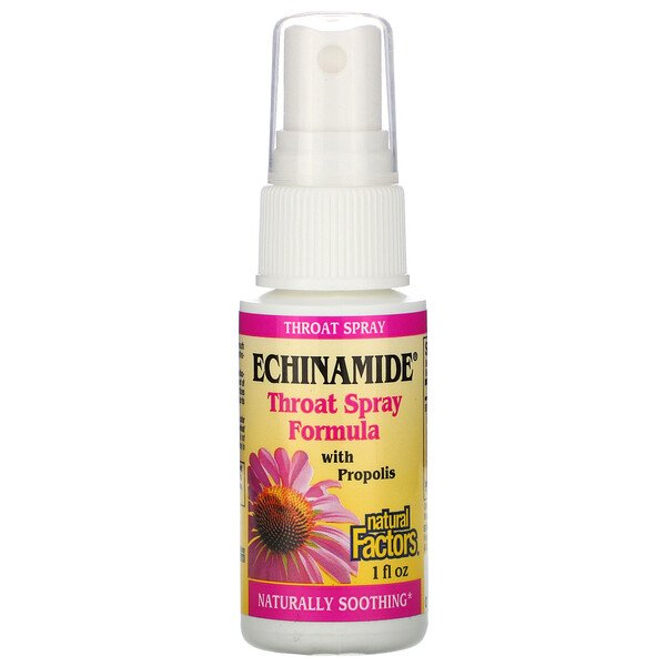 Natural Factors, Echinamide, Throat Spray Formula with Propolis, 1 fl oz