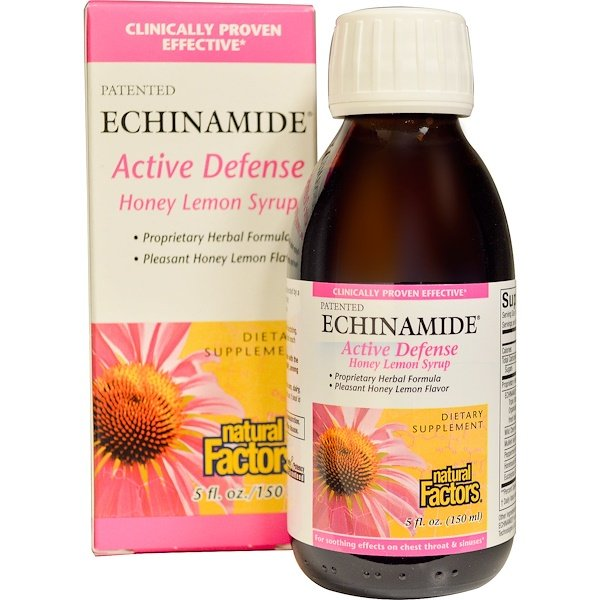 Natural Factors, Echinamide Active Defense, Honey Lemon Syrup, 5 fl oz (150 ml)