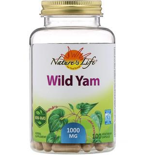 Nature's Life, Wild Yam, 1000 mg, 100 Vegetarian Capsules
