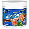North American Herb & Spice Co., Wild Power Tea, 2 oz (56.7 g) (Discontinued Item)