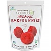 Natierra Nature's All , Organic Freeze-Dried, Raspberries, 1.3 oz (37 g)