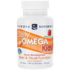 Nordic Naturals, Daily Omega Kids, Natural Fruit Flavor, 500 mg, 30 Soft Gels