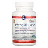 Nordic Naturals, Prenatal DHA, 500 mg, 90 Softgels