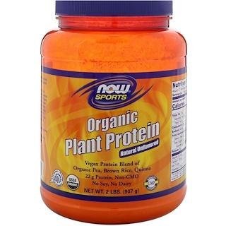 Now Foods, بروتين نباتي عضوي ، طبيعي بدون نكهة ، 2 رطل (907 غم)
