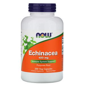Now Foods, Echinacea, 400 mg, 250 Veg Capsules отзывы покупателей