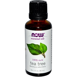Now Foods, Essential Oils,티 트리 오일, 1 fl oz (30 ml)