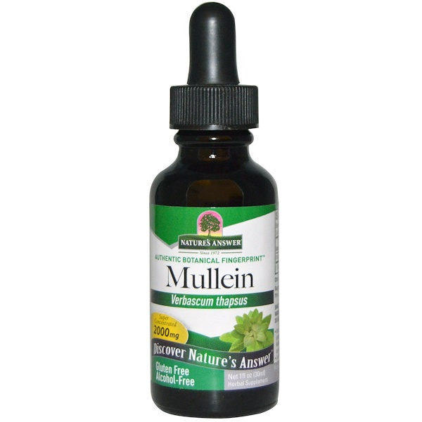 Nature's Answer, Mullein, Sem Álcool, 2.000 mg, 30 ml (1 fl oz)
