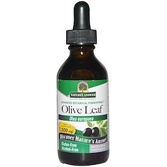Nature's Answer, Olive Leaf, Alcohol-Free, 1,500 mg, 2 fl oz (60 ml)
