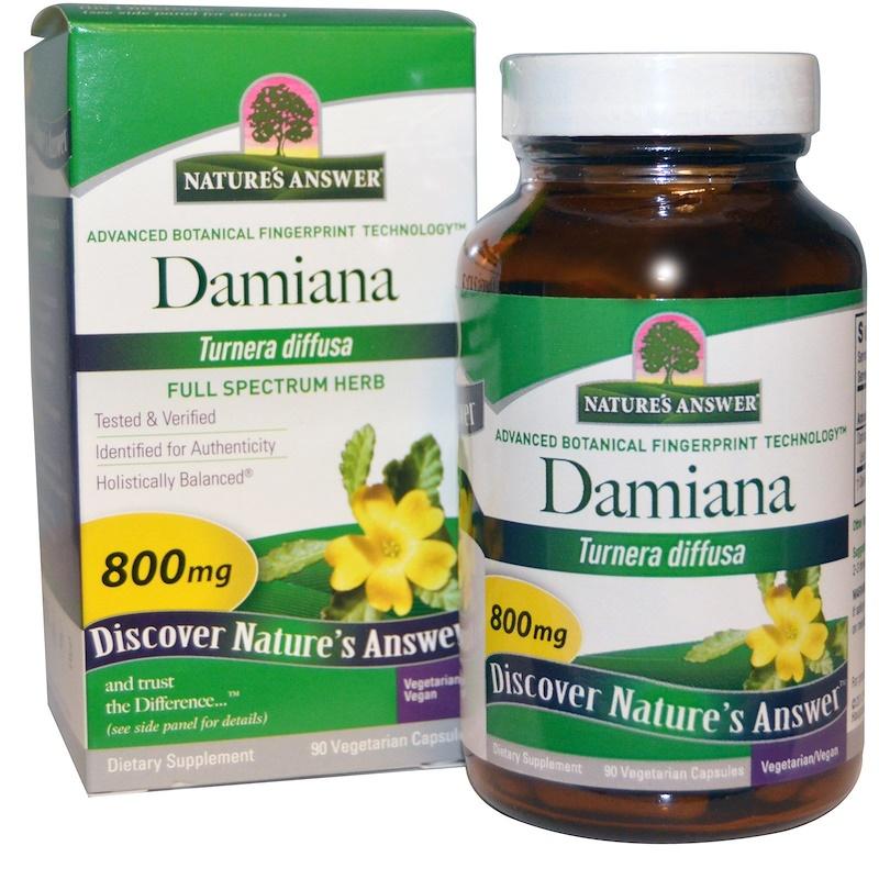 Nature's Answer, 達米阿那葉,800 毫克,90 粒素食膠囊