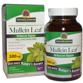 Nature's Answer, Mullein Leaf, 500 mg, 90 Vegetarian Capsules