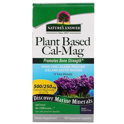 Купить Cal-Mag на растительной основе, 500/250 мг, 120 вегетарианских капсул