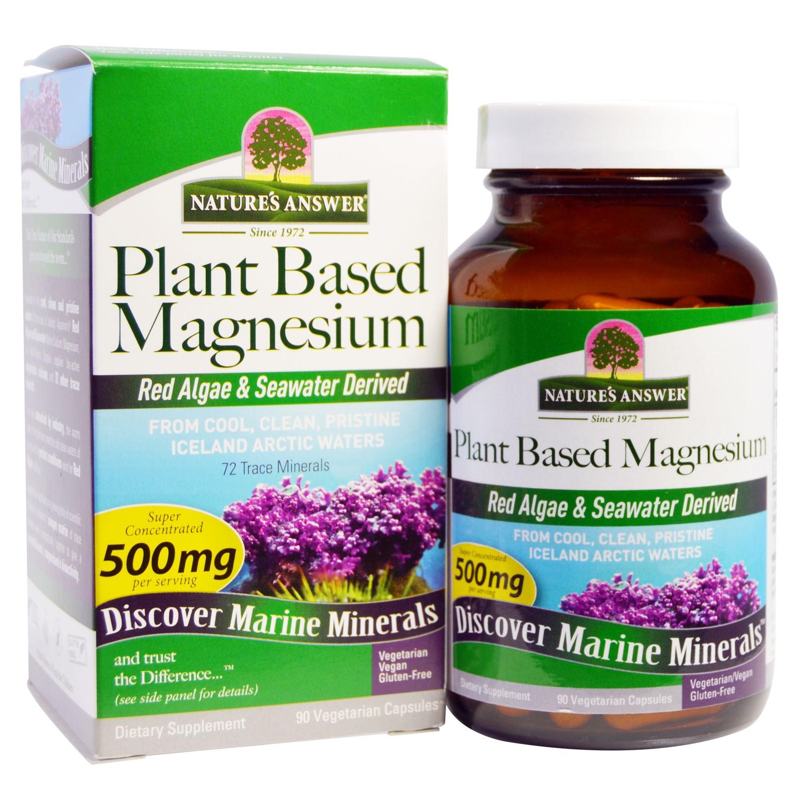 Nature's Answer, Растительный магний, 500 мг, 90 вегетарианских капсул