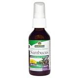 Отзывы о Nature's Answer, Sambucus,спрей-экстракт черной бузины, безалкогольный 2 жидких унции (60 мл)