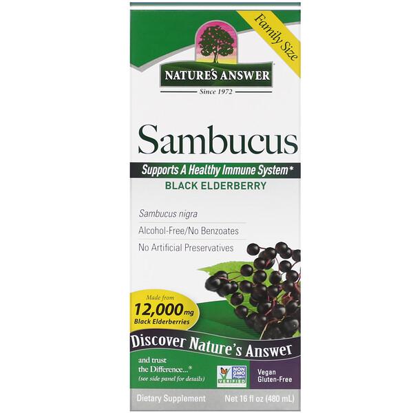 Sambucus, Black Elderberry, 12,000 mg, 16 fl oz (480 ml)