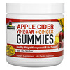 Nature's Answer, Apple Cider Vinegar + Ginger Gummies with The Mother, 500 mg, 45 Pectin Gummies