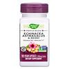 Nature's Way, Echinacea Astragalus & Reishi, 1,200 mg, 100 Vegan Capsules