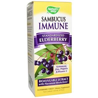 Nature's Way, Sambucus Immune, Echinacea, Zinc, Propolis & Vitamin C, 4 fl oz (120 ml)
