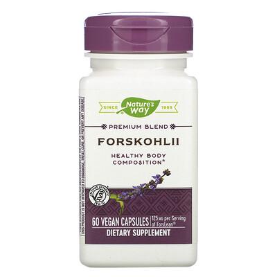 Купить Nature's Way Колеус форсколии, 125 мг, 60 веганских капсул