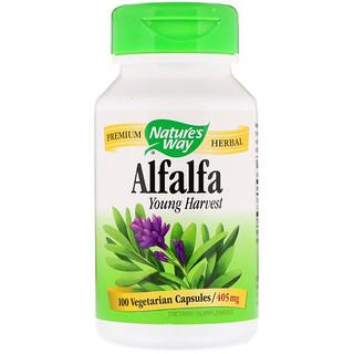 Nature's Way, アルファルファヤングハーベスト、 405 mg、 100植物性カプセル