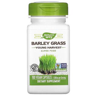 Nature's Way, Barley Grass, Young Harvest, 500 mg, 100 Vegan Capsules