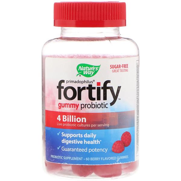 Nature's Way, Primadophilus, укрепление, жевательный пробиотик, без сахара, 60 жевательных таблеток со вкусом ягод (Discontinued Item)