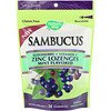 Nature's Way, Sambucus, Zinc Lozenges, Mint Flavored, 24 Lozenges
