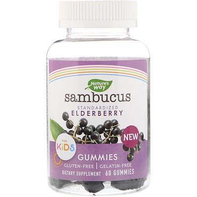 Купить Nature's Way Sambucus, стандартизированный экстракт бузины для детей, 60жевательных таблеток