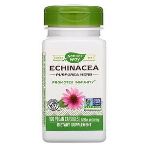Натурес Вэй, Echinacea Purpurea Herb, 1,200 mg, 100 Vegan Capsules отзывы покупателей
