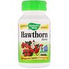 Nature's Way, Hawthorn Berries, 510 mg, 100 Vegetarian Capsules