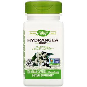 Натурес Вэй, Hydrangea Root, 740 mg, 100 Vegan Capsules отзывы