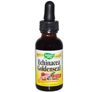 Nature's Way, Echinacea Goldenseal, Alcohol Free 99.9%, 1 fl oz (30 مل)