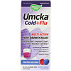 Nature's Way, Umcka Cold+Flu, Berry Flavored, 4 oz (120 ml)