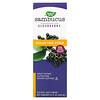 Nature's Way, Sambucus, Standardized Elderberry, Sugar-Free Syrup, 8 fl oz (240 ml)