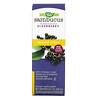 Nature's Way, Sambucus Immune Syrup, Standardized Elderberry, 8 fl oz (240 ml)