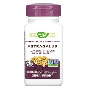 Натурес Вэй, Astragalus, 60 Vegan Capsules отзывы