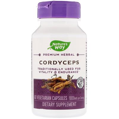 Фото - Cordyceps, 1,000 mg, 60 Vegetarian Capsules brazilian suma 60 vegetarian capsules