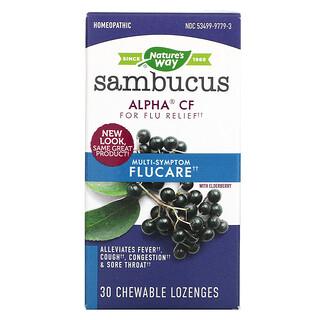 Nature's Way, Sambucus Cuidado de Gripe, Alívio da Gripe com Multi-Sintomas, Pastilhas de Sabugueiro, 30 Tabletes Mastigáveis